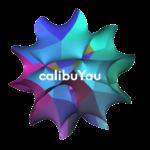 CalibuYau